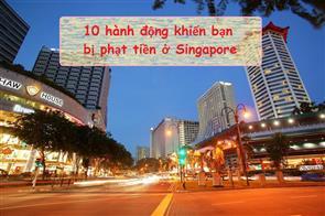10 Hành Động Khiến Bạn Bị Phạt Tiền Ở Singapore