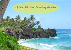 Lý Sơn, Hòn Đảo Của Những Sắc Màu