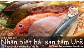 Bí quyết nhận ra hải sản tẩm urê